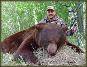 black bear bowhunting alberta canada archery bear bowhunts. Black Bedroom Furniture Sets. Home Design Ideas